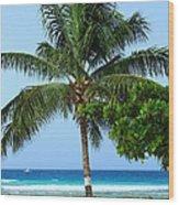 Solo Palm Wood Print