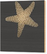 Solo Starfish I Wood Print