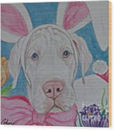 Some Bunny Says Spring Has Sprung Wood Print