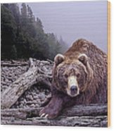 Some Days You Eat The Bear Some Days The Bear Eats You Wood Print