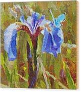 Alaskan Wild Iris And Blue Butterfly Flower Painting Wood Print