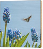 Something In The Air Wood Print by John Edwards