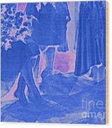 Something Old Something New Something Borrowed Something Blue By Jrr Wood Print