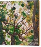 Somewhere In Bolingbrook Illinois Wood Print