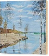 Somewhere In Dalarna Wood Print