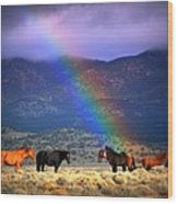 Somewhere Over The Rainbow Wood Print by Jeanne  Bencich-Nations