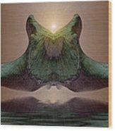 Sonar 5 Wood Print