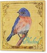Colorful Songbirds 1 Wood Print