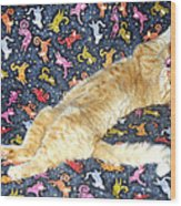 Sonny Cat On Sacred Cat Quilt Wood Print