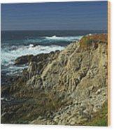 Sonoma Coast 1 Wood Print