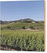 Sonoma County Vineyards Wood Print