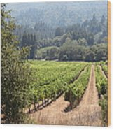 Sonoma Vineyards In The Sonoma California Wine Country 5d24515 Square Wood Print
