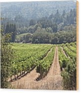 Sonoma Vineyards In The Sonoma California Wine Country 5d24515 Wood Print