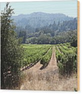 Sonoma Vineyards In The Sonoma California Wine Country 5d24516 Wood Print