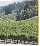 Sonoma Vineyards In The Sonoma California Wine Country 5d24539 Wood Print