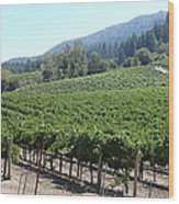Sonoma Vineyards In The Sonoma California Wine Country 5d24541 Wood Print