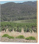 Sonoma Vineyards In The Sonoma California Wine Country 5d24602 Wood Print