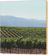 Sonoma Vineyards In The Sonoma California Wine Country 5d24623 Wood Print