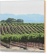 Sonoma Vineyards In The Sonoma California Wine Country 5d24625 Wood Print