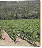 Sonoma Vineyards In The Sonoma California Wine Country 5d24632 Wood Print