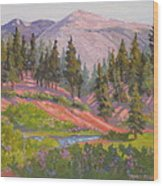 Sonora Pass Meadow Wood Print