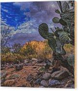 Sonoran Desert 54 Wood Print