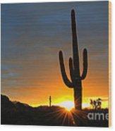 Sonoran Desert Sunrise 4 Wood Print