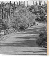 Sonoran Drive Wood Print