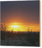Sonoran Sunset Wood Print