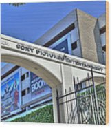 Sony Pictures Entertainment Production Distribution Wood Print