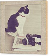Sophie And The Camera Wood Print