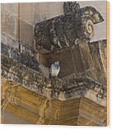 Sophisticated Baroque Bird Perch Wood Print