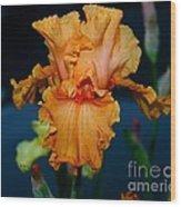 Soprano Iris Wood Print