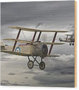 Sopwith Triplane Wood Print by Pat Speirs