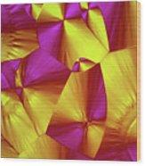 Sorbitol Crystals Wood Print