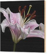 Sorbonne Lily-0002 Wood Print