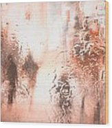 Sore Wounded Trails  Wood Print