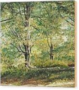 Sorica Mountain Wood Print