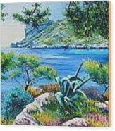 Sormious Cove Wood Print