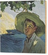 Sorollajoaqu�n 1863-1923. Boy With Hat Wood Print