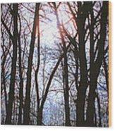 Soulshine Wood Print