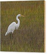 Soundside Park Topsail Island Egret Wood Print