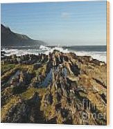 South Africa Coast Wood Print