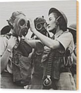 South African Womens Auxiliary Services Wood Print