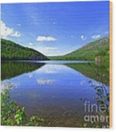 South Branch Pond Wood Print