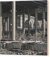 South Bronx Shanty Shacks - New York Wood Print