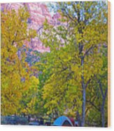 South Campground In Zion Np-ut Wood Print