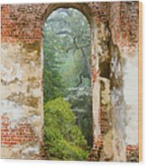 South Carolina Historic Church Photo Sheldon Ruins-- Another View From The Inside Wood Print