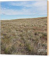 South-central Washington Grassland Wood Print