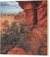 South Coyote Buttes Grand View Wood Print by Inge Johnsson